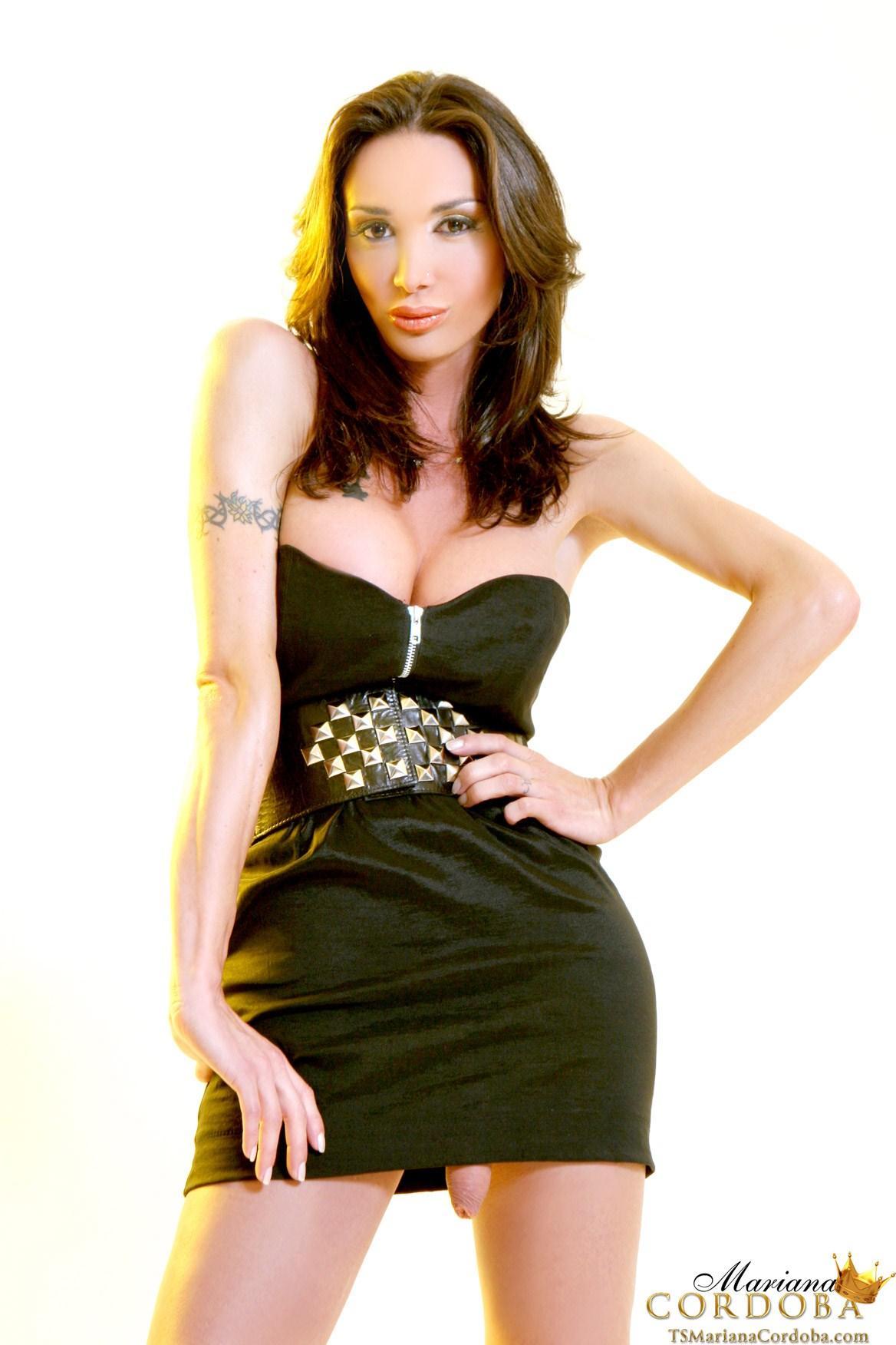 Gorgeous female Porn tranny ana mancini